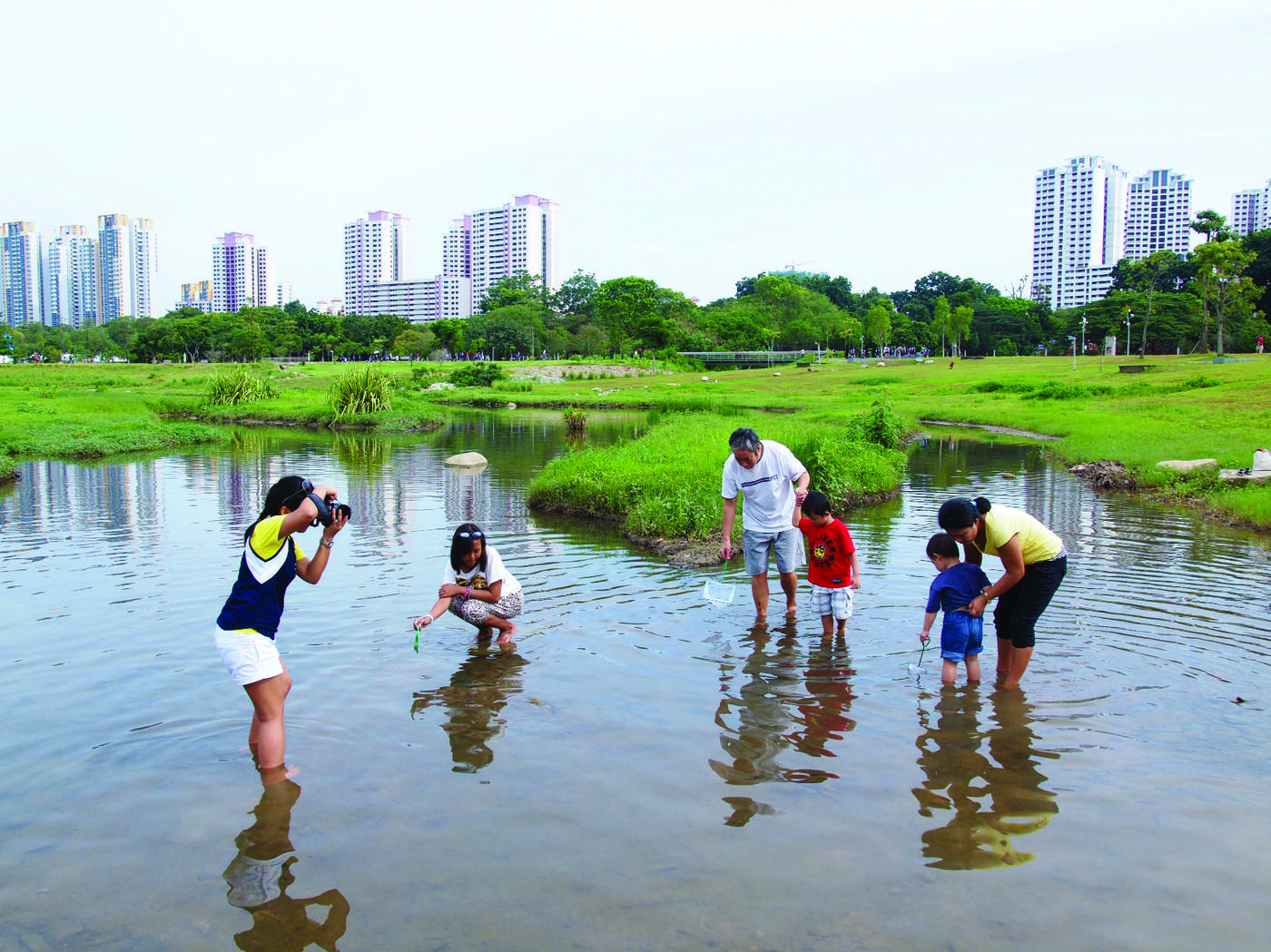 Maintaining our precious environmental heritage – a view of the Central Catchment Nature Reserve and Bishan- Ang Mo Kio Park.